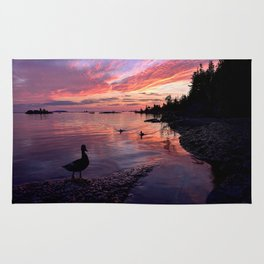 Ducks at Sunrise Rug