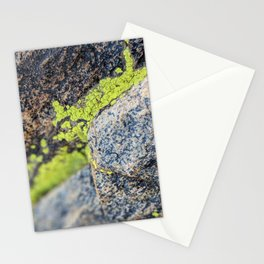 lichen on a hike Stationery Cards