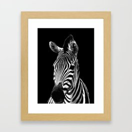 Zebra Black Framed Art Print