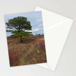 The Big Meadow Stationery Cards