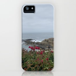 Hill Top Waters iPhone Case