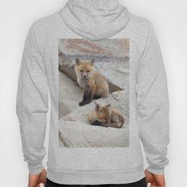 Watercolor Fox, Red Fox 39, Union Reservoir, Boulder County Hoody