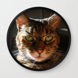 Marley the Mackerel Tabby Cat with Intense Green Eyes Wall Clock