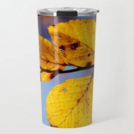 Beech Travel Mug