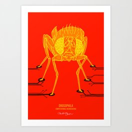 Drosophila: Computational neuroscience Art Print