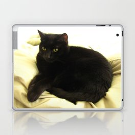 Queen Kitty 2795 Laptop & iPad Skin