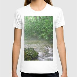 Davidson River T-shirt