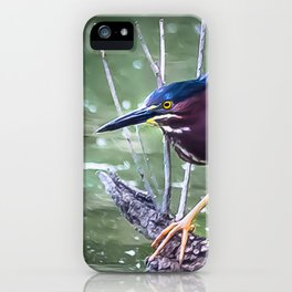 Green Heron Hunting iPhone Case