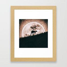 The solitary kangaroo Framed Art Print