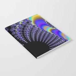 Fascinating Fractal Notebook