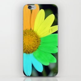 colorful daisy iPhone Skin