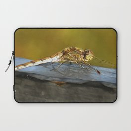Resting Dragonfly Laptop Sleeve