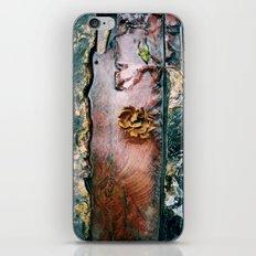 La Gran Sabana iPhone & iPod Skin