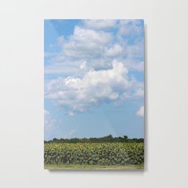 Field of Sunflowers Vertical Metal Print