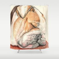 english bulldog Shower Curtains featuring English bulldog Alfie by Pendientera