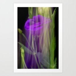 Fleur Blur-Abstract Purple Flower Photo Art Print