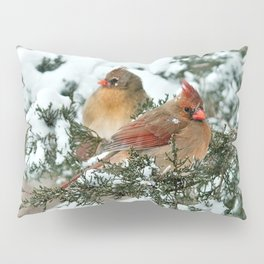 After the Snow Storm: Three Cardinals Pillow Sham