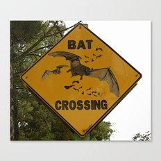 Bats Xing Canvas Print