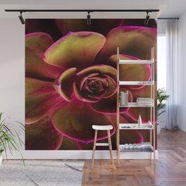 MAGENTA TINGED JADE SUCCULENT ART Wall Mural