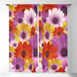 Colorful Medley of African Daisies Blackout Curtain