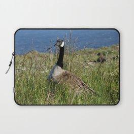 Canada Goose in Wild Grass Laptop Sleeve