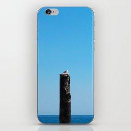 Lone One iPhone Skin