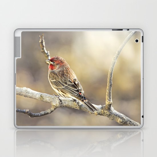 Rosy Little Finch Laptop & iPad Skin