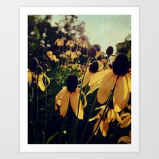 Sunshine and Flowers Art Print