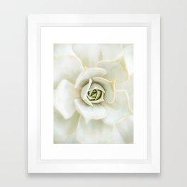 Dreamy White Succulent Framed Art Print