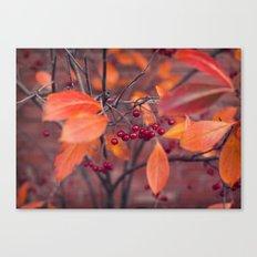 Fall Berries Canvas Print