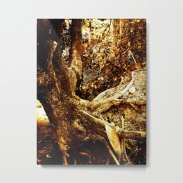 Nature Elders Metal Print