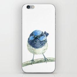 Fairy wren bird iPhone Skin