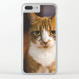 The Cat. Clear iPhone Case