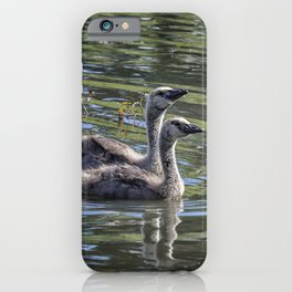 Two Goslings Taking a Swim, No. 2 iPhone Case