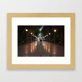 melbourne luna park Framed Art Print