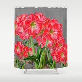 REDDISH-WHITE AMARYLLIS GARDEN CHARCOAL GREY ART Shower Curtain