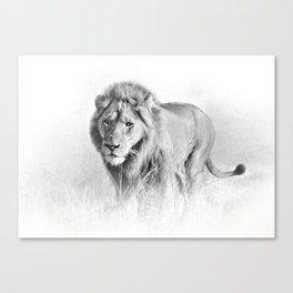 Lion Art - B&W Wildlife Photography Canvas Print