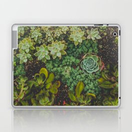 Botanical No. 4224 Laptop & iPad Skin