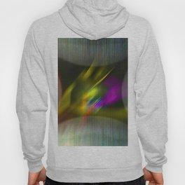 Coloratum metallum Hoody