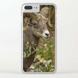 Ram Eating Fireweed cropped Clear iPhone Case