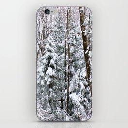 Snowy Scene iPhone Skin