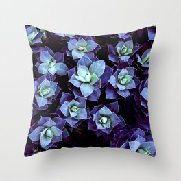 EUPHORBIA #1 Throw Pillow