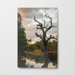 Wetland Tree Metal Print
