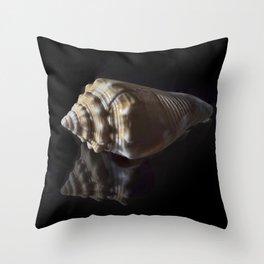 Spiral Sea Shell Throw Pillow