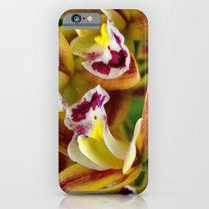 Three Orchids  iPhone 6s Slim Case
