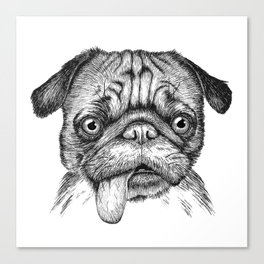 Pug with Tongue out Canvas Print