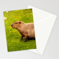 Capybara Stationery Cards