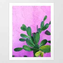 Cactus on Pink Wall Art Print