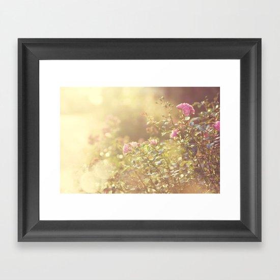 SUNLIGHT GARDEN II Framed Art Print