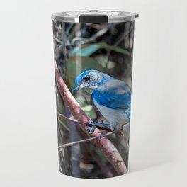 California Scrub Jay Travel Mug